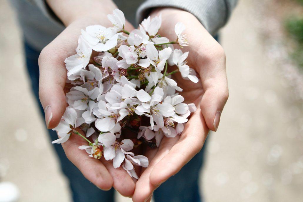 Giving flowers in open hands
