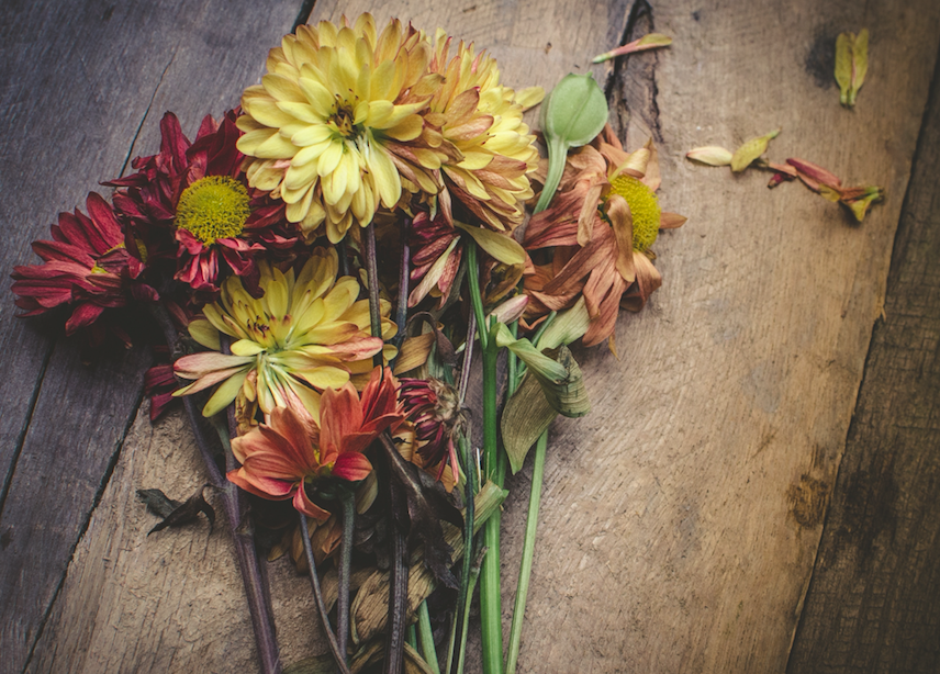 dying bouquet of flowers